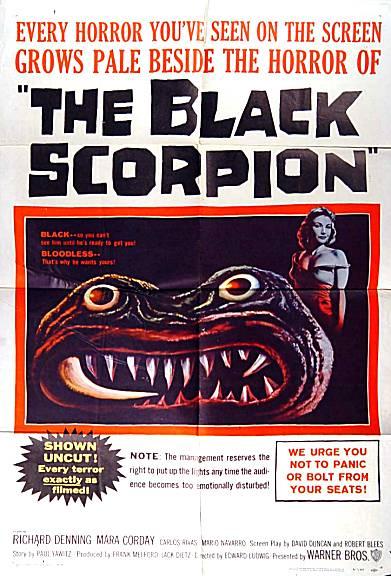 black_scorpion_2.jpg